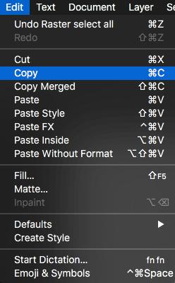 Edit Copy