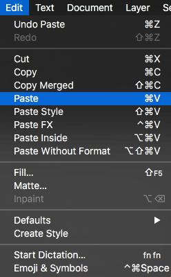 Edit Paste